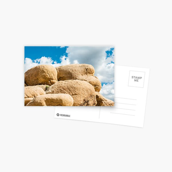 Big Rock Joshua Tree 7445 Postcard