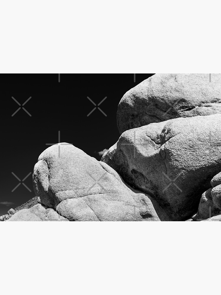 Big Rock Joshua Tree 7447 by neptuneimages