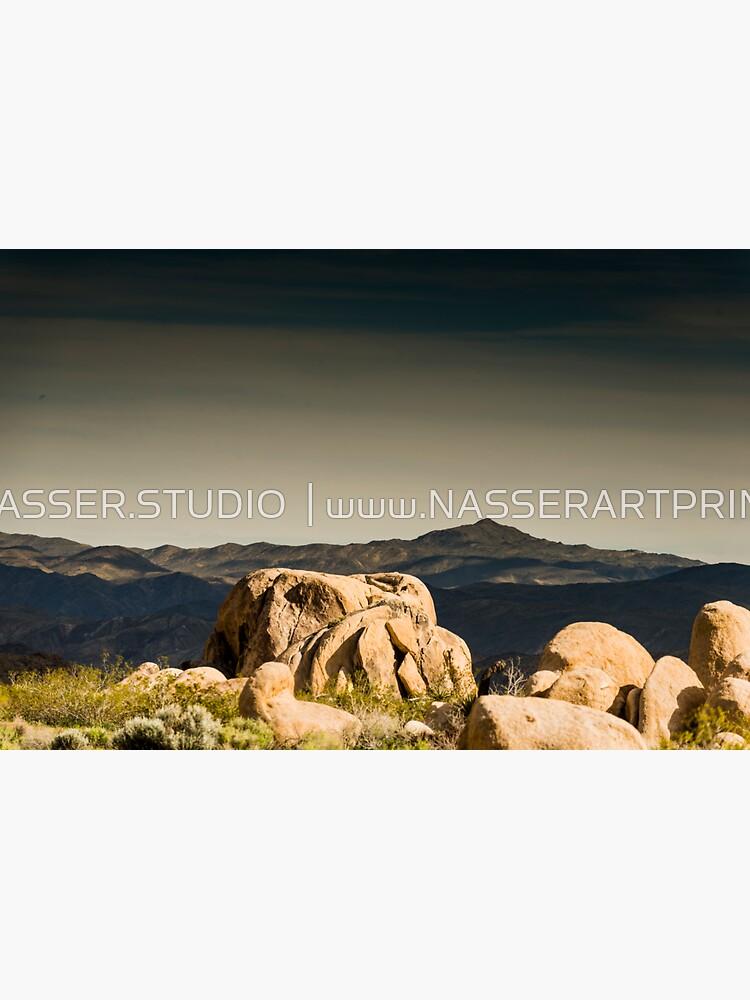 Big Rock Joshua Tree 7450 by neptuneimages