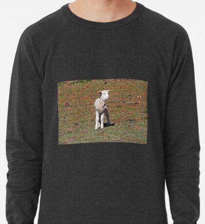 Kleines Lamm verloren Leichtes Sweatshirt