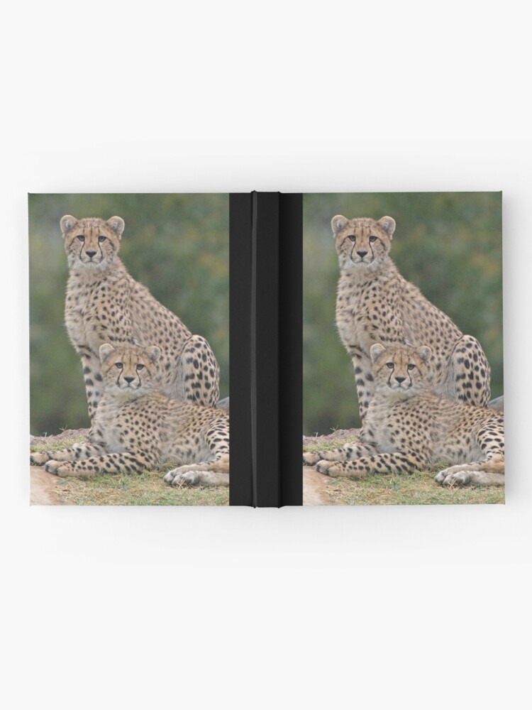 Alternate view of Brothers Hardcover Journal