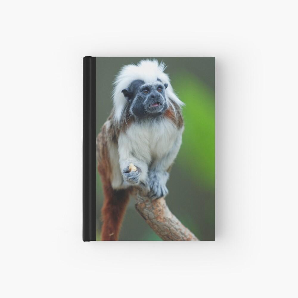 Cotton Top Tamarin Hardcover Journal