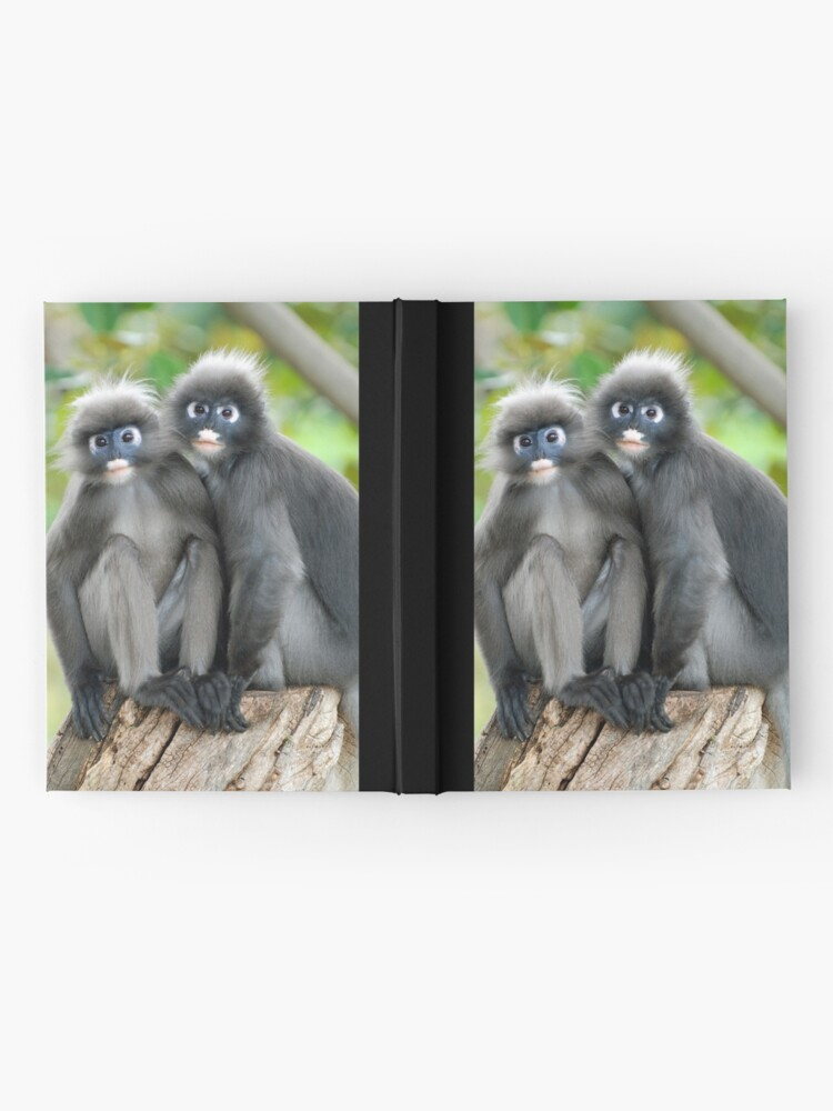 Alternate view of Dusky Leaf Monkeys Hardcover Journal
