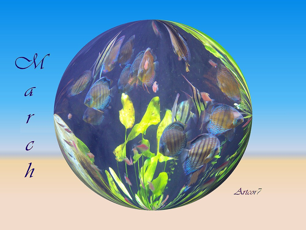 Blue Fish in March by artcor7