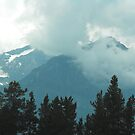 Rocky Mountains, Canada by Matthew Walmsley-Sims