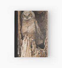 Baby Great Horned Owl Hardcover Journal