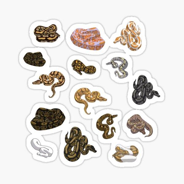 Ball Python Morph Snake Pattern Sticker