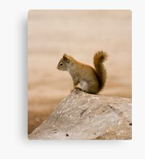 King of the stone! Canvas Print