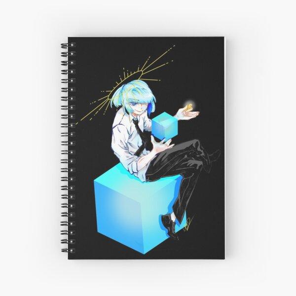 Flip a Coin? Spiral Notebook