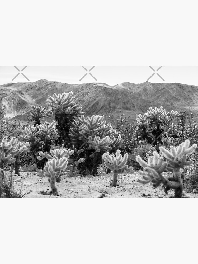 Super Bloom Paradise Joshua Tree 7375 by neptuneimages