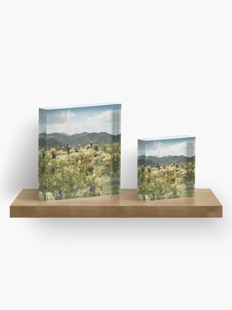 Alternate view of Super Bloom Paradise Joshua Tree 7377 Acrylic Block