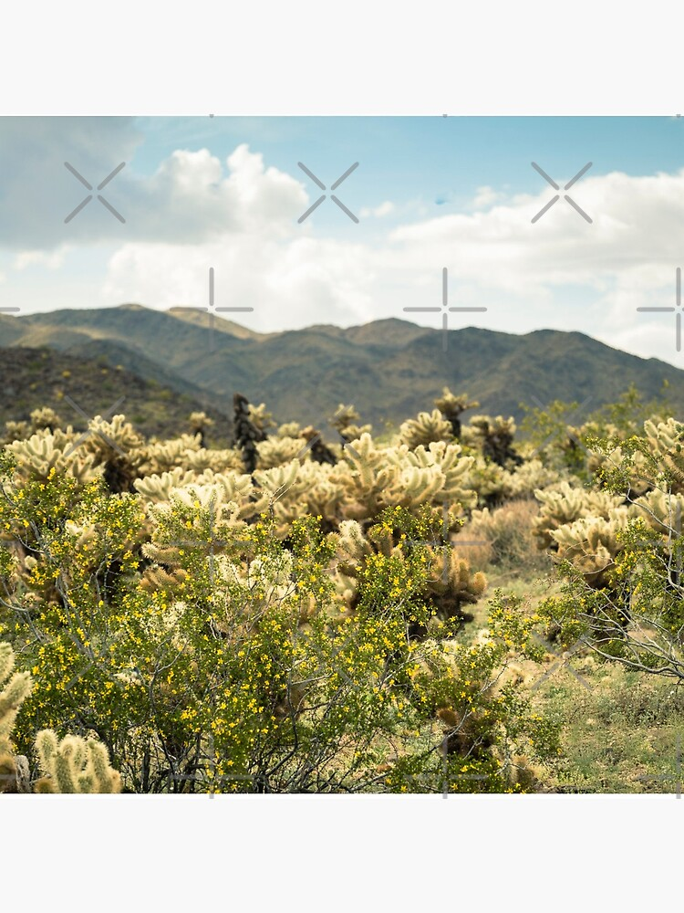 Super Bloom Paradise Joshua Tree 7377 by neptuneimages