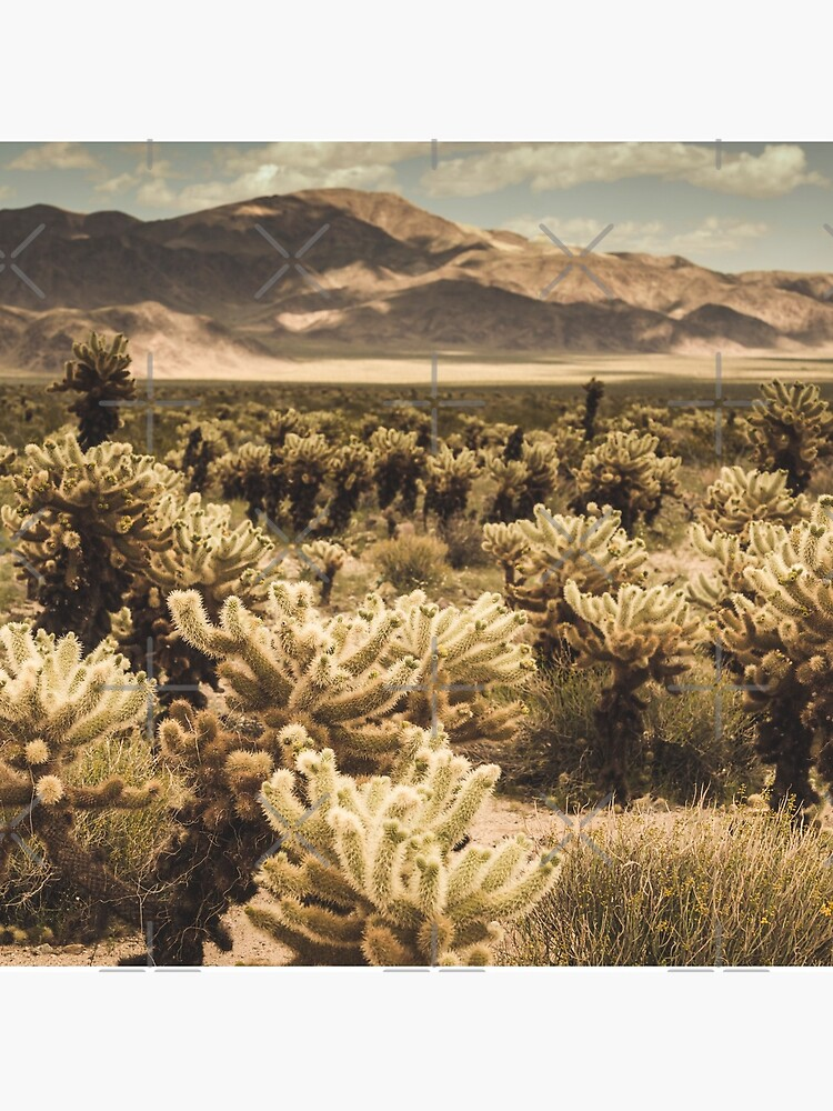 Super Bloom Paradise Joshua Tree 7379 by neptuneimages