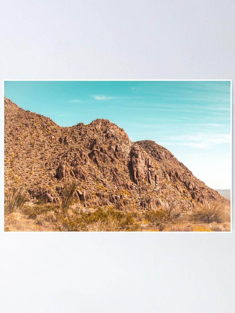 Alternate view of Landscape Joshua Tree 7339 Poster