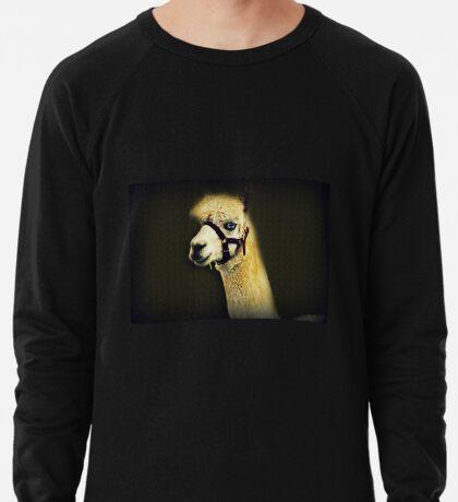 Eine andere Art von Alpaka Leichtes Sweatshirt