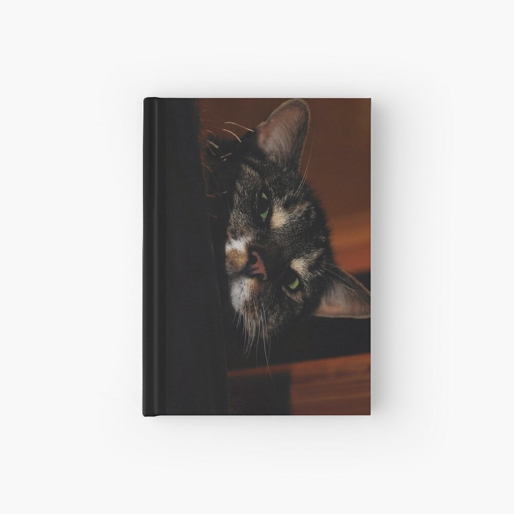 'Ello.. Hardcover Journal