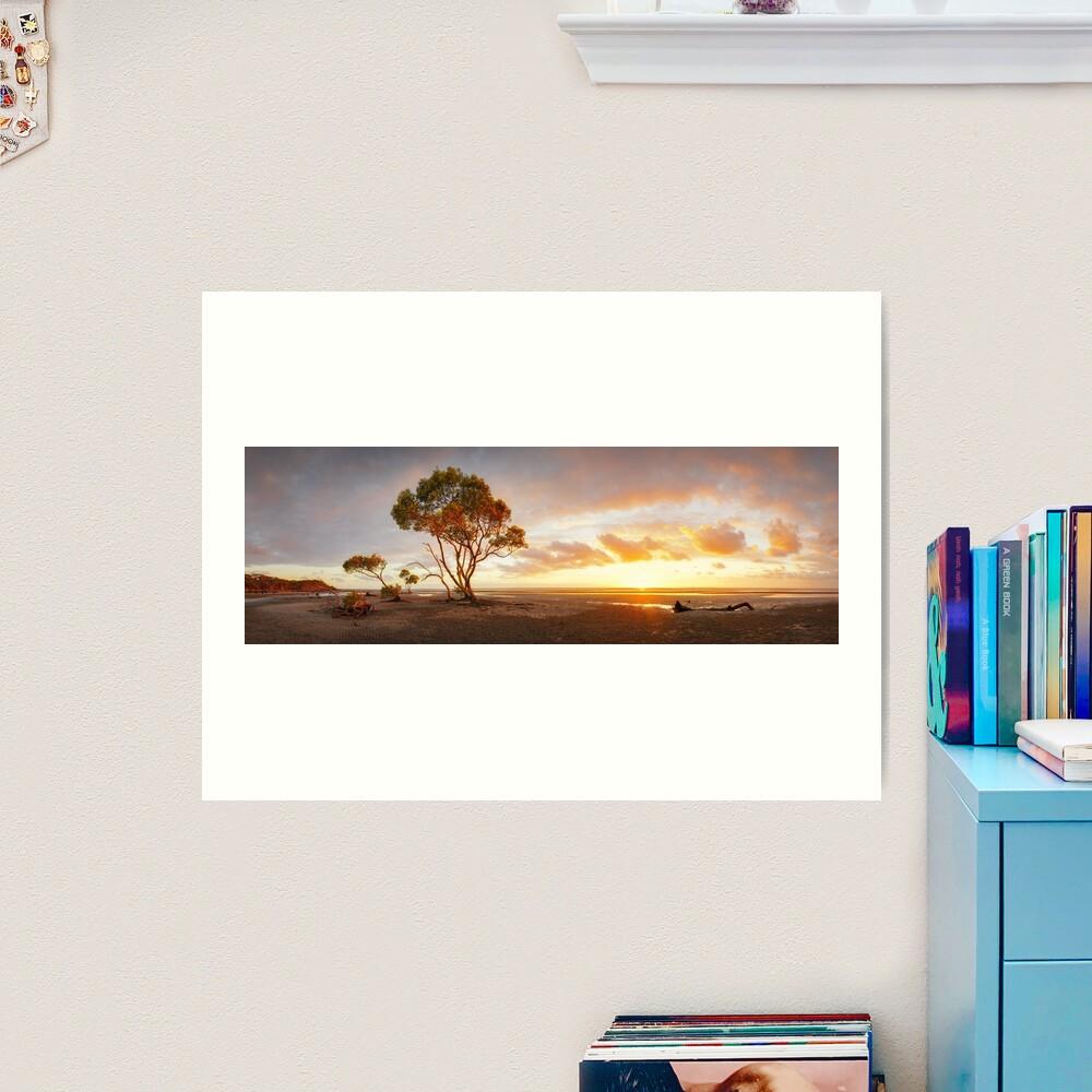 Mangrove Trees, Moreton Bay, Queensland, Australia Art Print