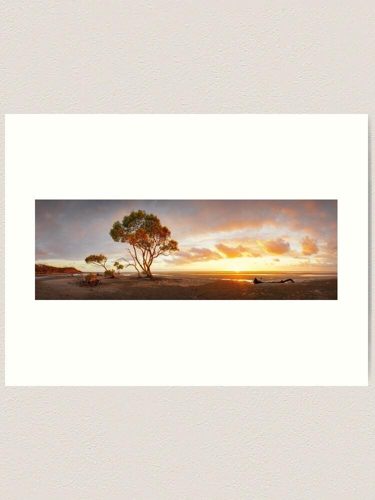 Alternate view of Mangrove Trees, Moreton Bay, Queensland, Australia Art Print