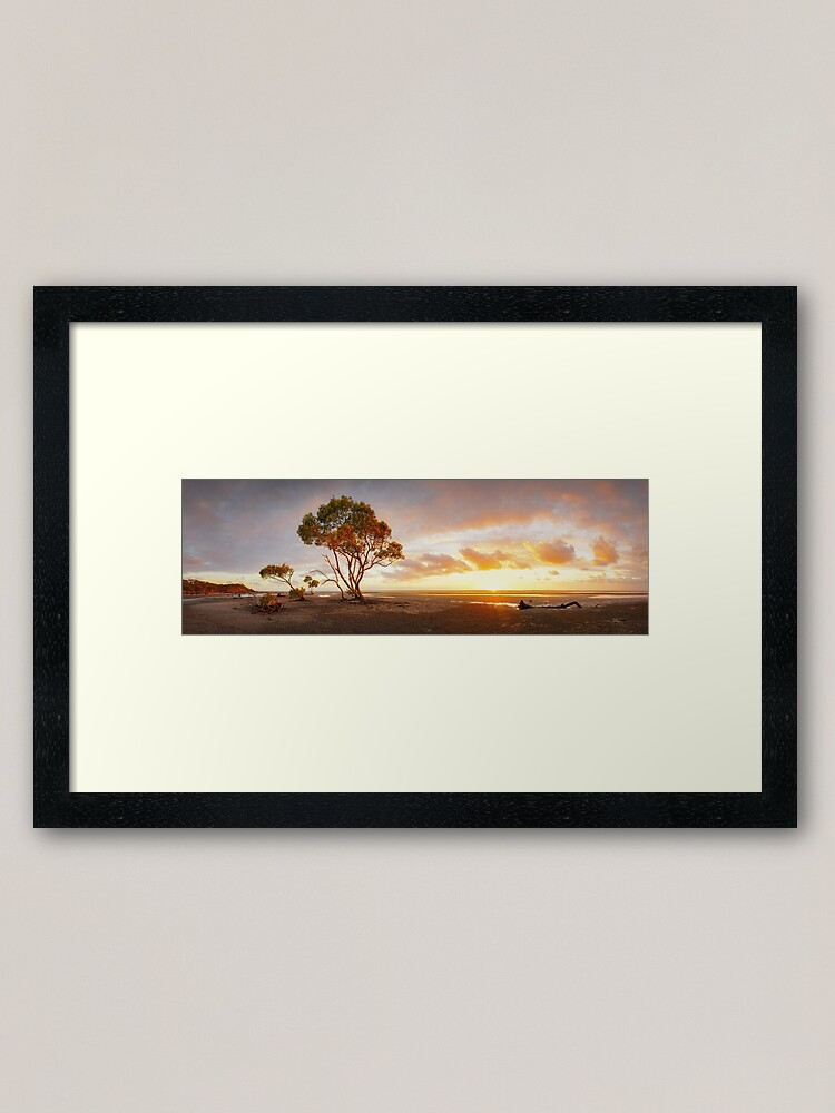 Alternate view of Mangrove Trees, Moreton Bay, Queensland, Australia Framed Art Print