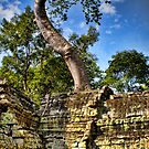 Angkor Wat by Louise Fahy
