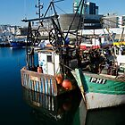 Sutton Harbour by Country  Pursuits