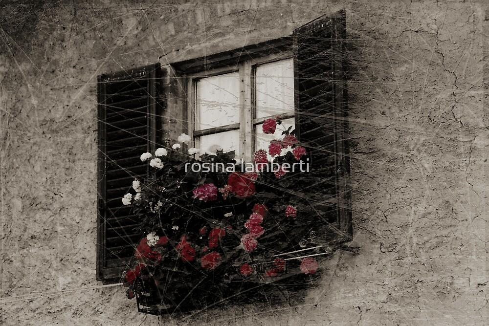 Castellina in Chianti by Rosina  Lamberti