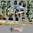 Slide Jump Rally - Colour/Grey by Ryan Jones