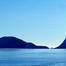 Doubtful Sound Silhouette by Kathie Nichols