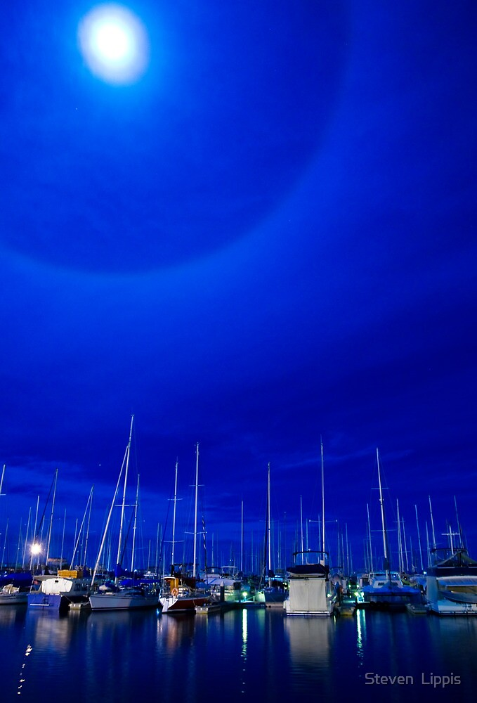 Moon Over Manly by Steven  Lippis
