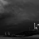 The Black and White Storm by Sheldon Pettit
