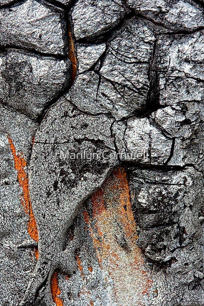 Volcanic Ash by Marilyn Cornwell