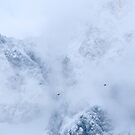 Ravens, snowy mountains and clouds by Patrik Lovrin