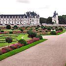 Chenonceau Castle 2 by Adri  Padmos