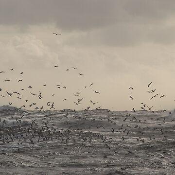 Gaviotas sobre el mar tempestuoso de RoseAesthetic