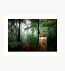 Appalachian Trail Magic Art Print