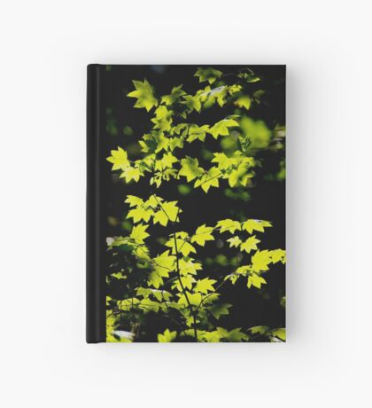 late summer sunny maple leaves Hardcover Journal