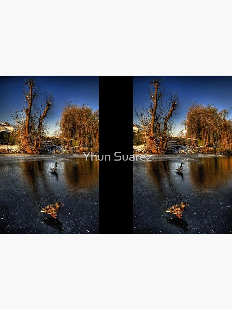 Ducks On Ice  by spectrumcry