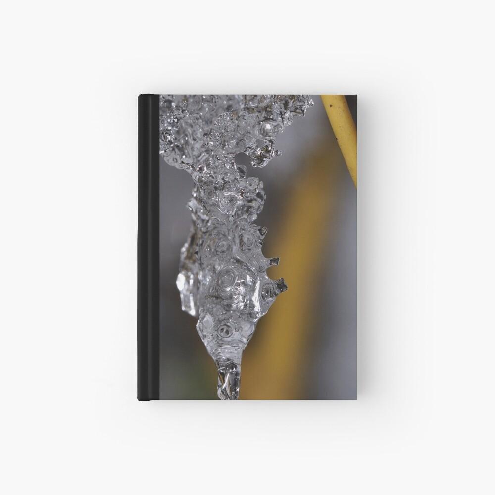 Ice Chrysalis Hardcover Journal
