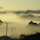 Tasmanian Autumn by phillip wise