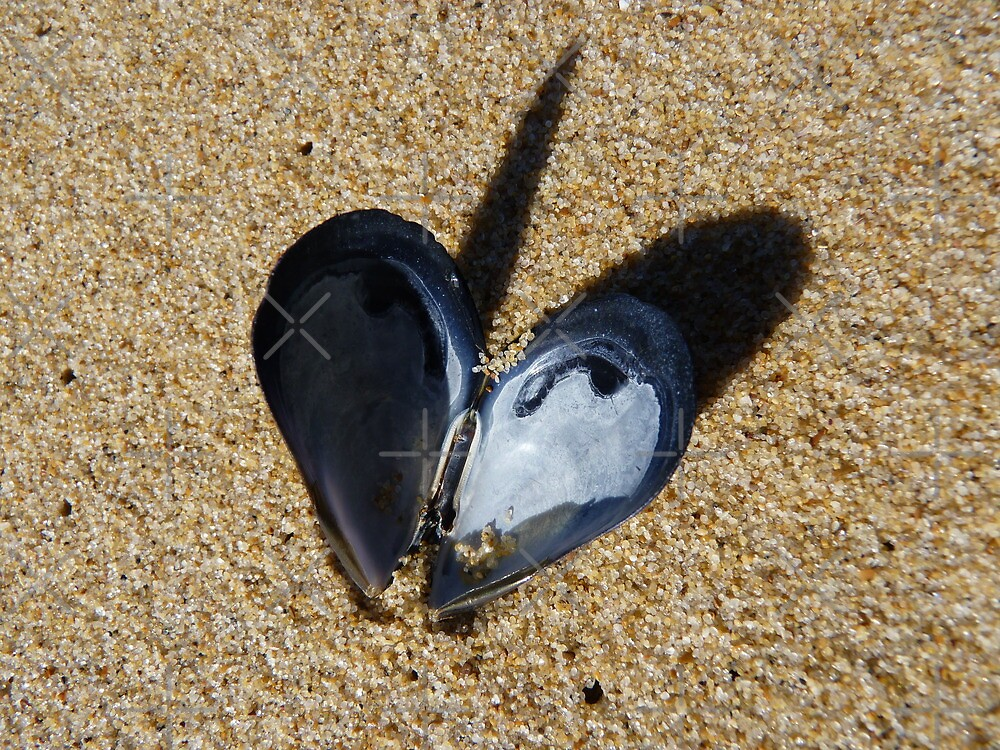 mussel heart by poupoune