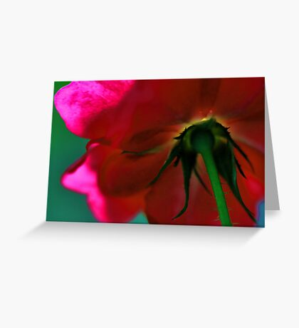 Beneath The Beauty Lies The Thorns Greeting Card