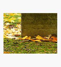 Autumn Memorial Photographic Print