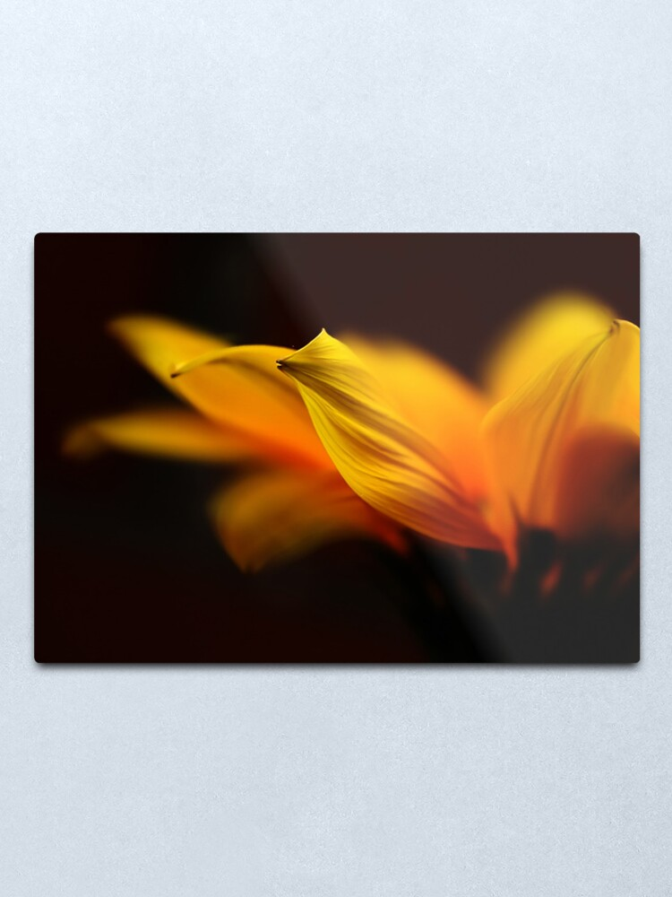 Alternate view of my little sunshine Metal Print