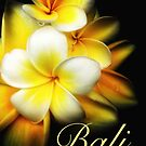 Bali - Cover Art by Cassie Robinson