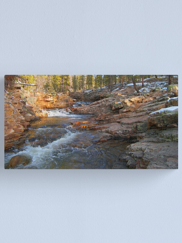 Alternate view of November Light Canvas Print