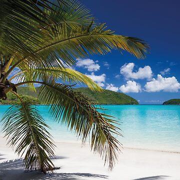 Paradise Island by fourretout