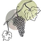 Nebbiolo Grapes over Green and Grey Ink  by Whitney Cole