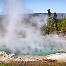 Hot Pool in Yellowstone NP, Wyoming, USA by Teresa Zieba