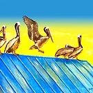 Pelikane auf dem Dach von Jan Marvin