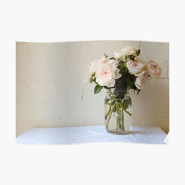 Pale pink roses Poster